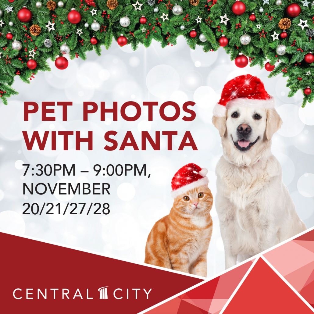 Pet Photos with Santa, Central City, Surrey, BC